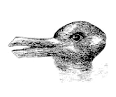 Drawing that can be seen as a rabbit or duck